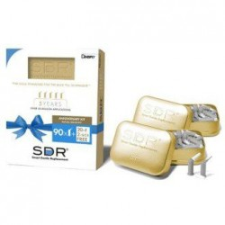 SDR 5. výročie