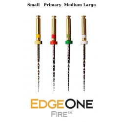 EdgeOne Fire