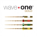 WAVEONE GOLD